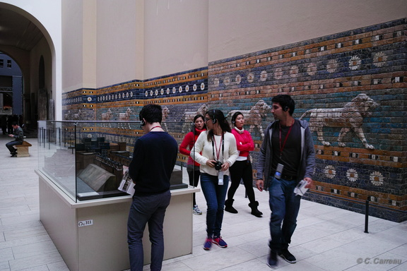PERGAMON BERLIN 2016 Carreau